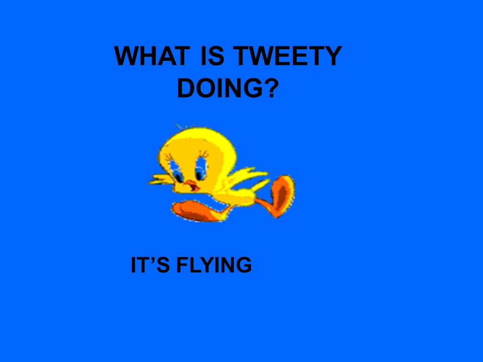 WHAT IS TWEETY DOING IT'S FLYING