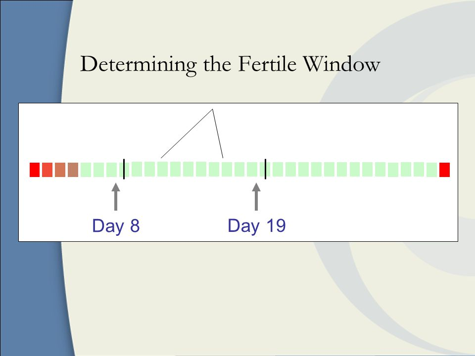 Determining the Fertile Window Day 8Day 19