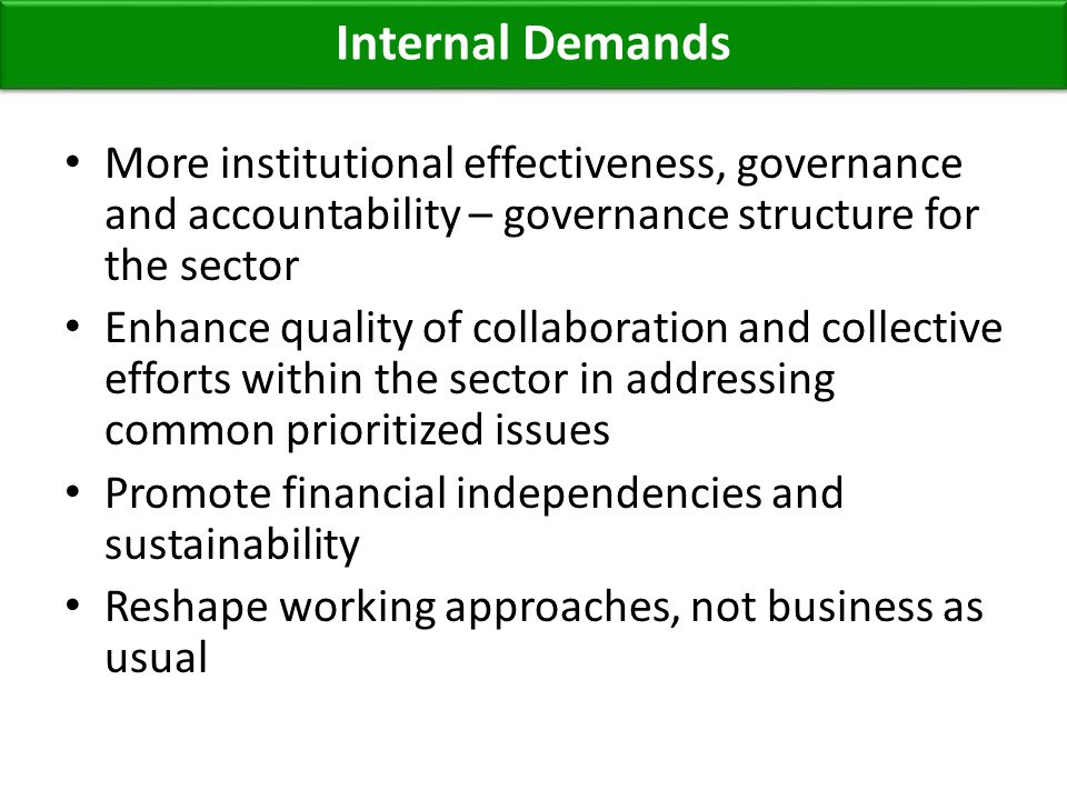 More institutional effectiveness, governance and accountability – governance structure for the sector Enhance quality of collaboration and collective efforts within the sector in addressing common prioritized issues Promote financial independencies and sustainability Reshape working approaches, not business as usual Internal Demands