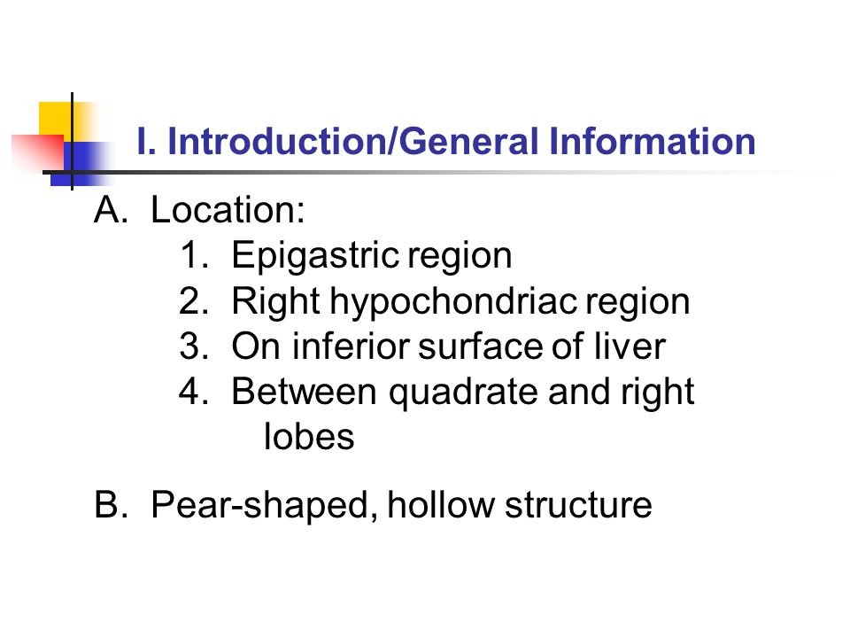 I. Introduction/General Information A. Location: 1.