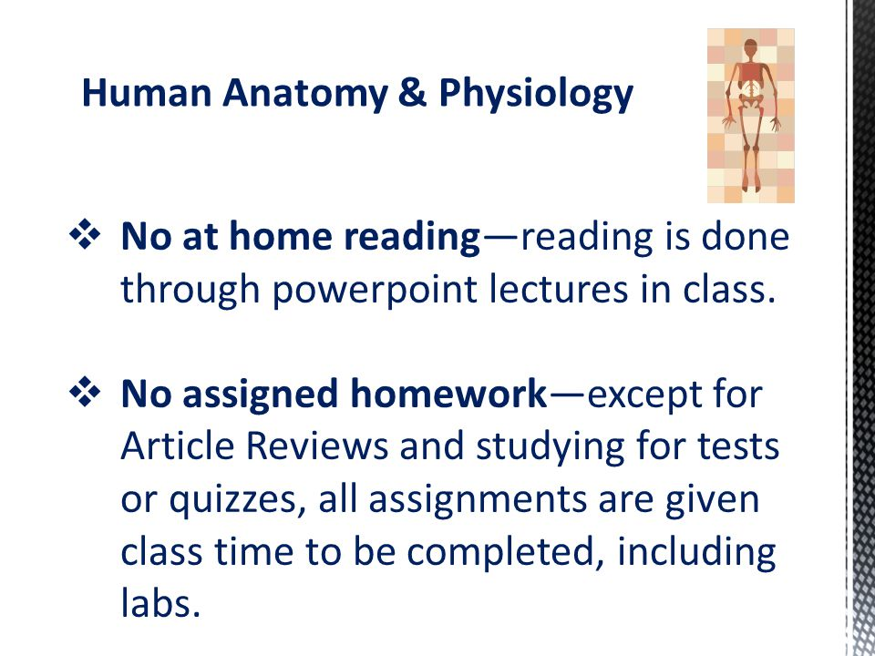 Human Anatomy Physiology Science Elective To Explore The