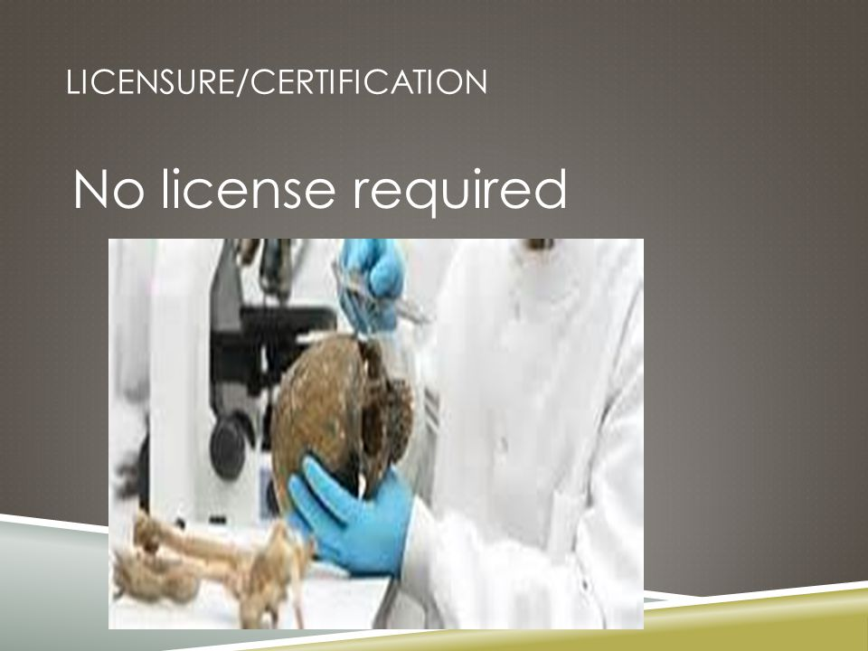 LICENSURE/CERTIFICATION No license required
