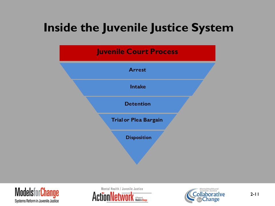 junenile justice system should focus on The juvenile justice system should focus on rehabilitation write a 1,750- to 2,100-word position paper in apa format arguing one of the following positions: o the juvenile justice system should focus on rehabilitation.