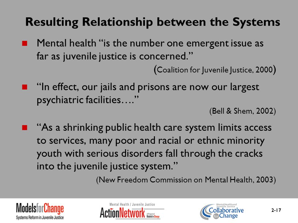 Mental Health Training Curriculum For Juvenile Justice Module 2 The