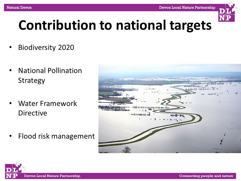 Contribution to national targets Biodiversity 2020 National Pollination Strategy Water Framework Directive Flood risk management
