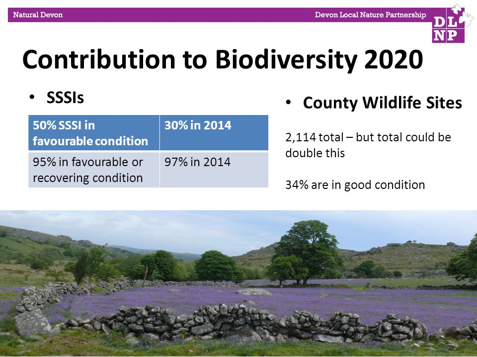 SSSIs 50% SSSI in favourable condition 30% in % in favourable or recovering condition 97% in 2014 Wildlife Sites County Wildlife Sites 2,114 total – but total could be double this 34% are in good condition Contribution to Biodiversity 2020