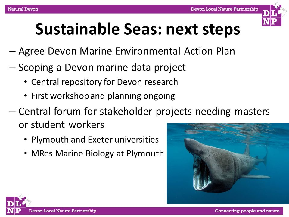 Sustainable Seas: next steps – Agree Devon Marine Environmental Action Plan – Scoping a Devon marine data project Central repository for Devon research First workshop and planning ongoing – Central forum for stakeholder projects needing masters or student workers Plymouth and Exeter universities MRes Marine Biology at Plymouth