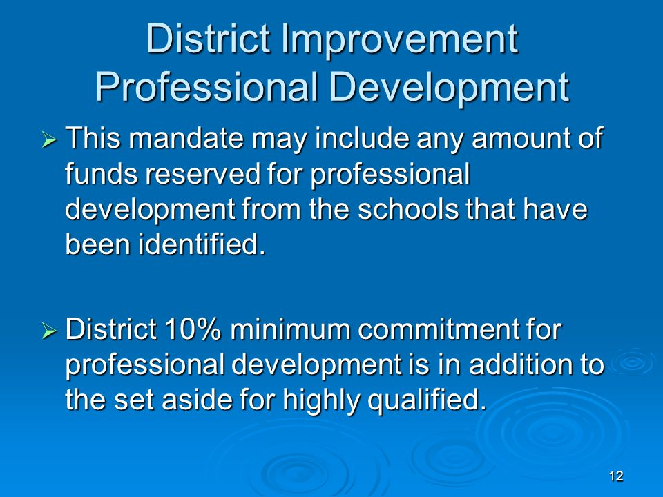 12 District Improvement Professional Development  This mandate may include any amount of funds reserved for professional development from the schools that have been identified.
