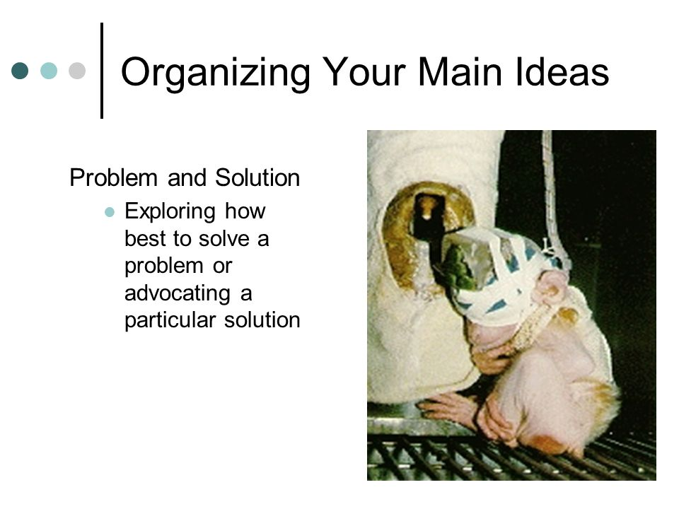 Organizing Your Main Ideas Problem and Solution Exploring how best to solve a problem or advocating a particular solution