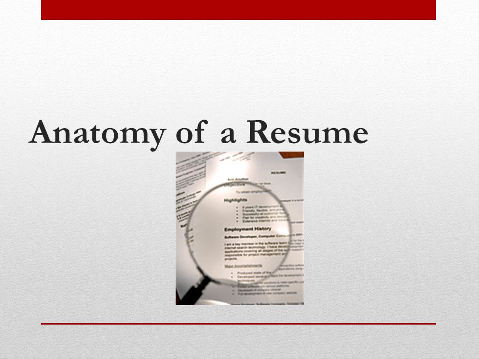 Anatomy of a Resume