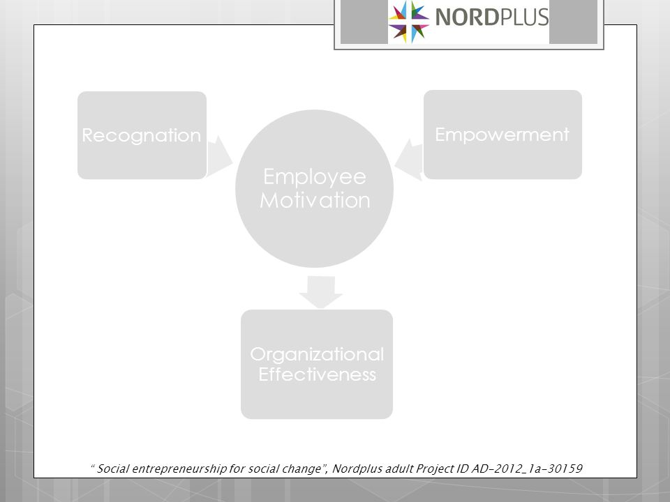 Employee Motivation Recognation Organizational Effectiveness Empowerment Social entrepreneurship for social change , Nordplus adult Project ID AD-2012_1a-30159