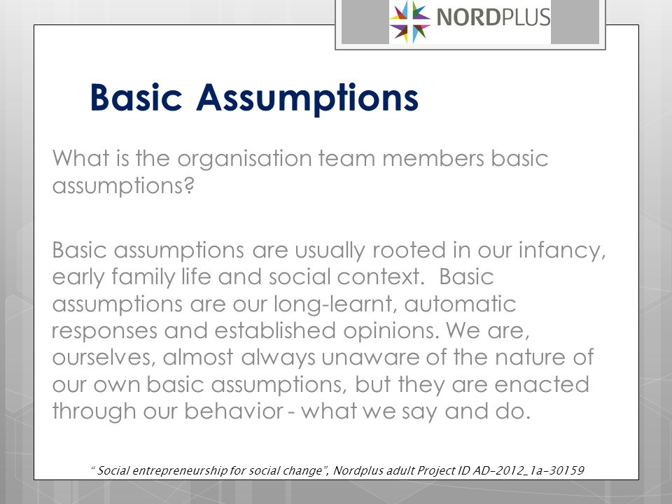 Basic Assumptions What is the organisation team members basic assumptions.