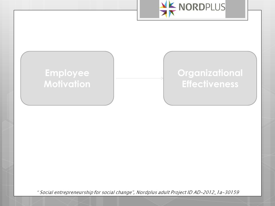 Employee Motivation Organizational Effectiveness Social entrepreneurship for social change , Nordplus adult Project ID AD-2012_1a-30159