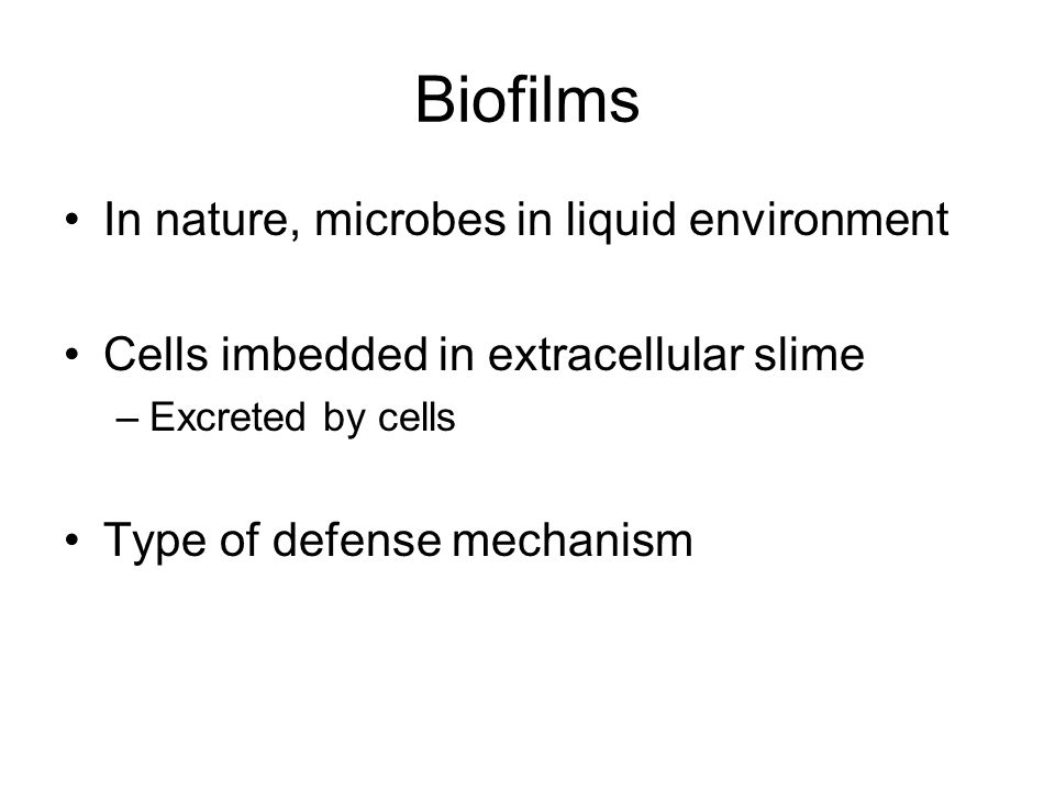 Biofilms In nature, microbes in liquid environment Cells imbedded in extracellular slime –Excreted by cells Type of defense mechanism