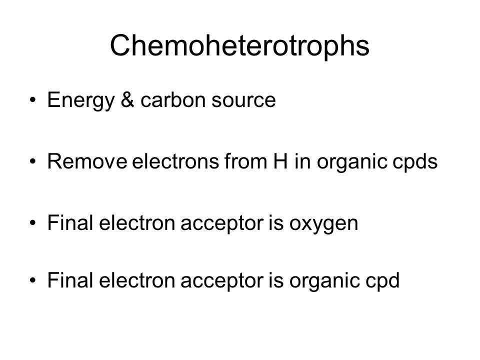 Chemoheterotrophs Energy & carbon source Remove electrons from H in organic cpds Final electron acceptor is oxygen Final electron acceptor is organic cpd