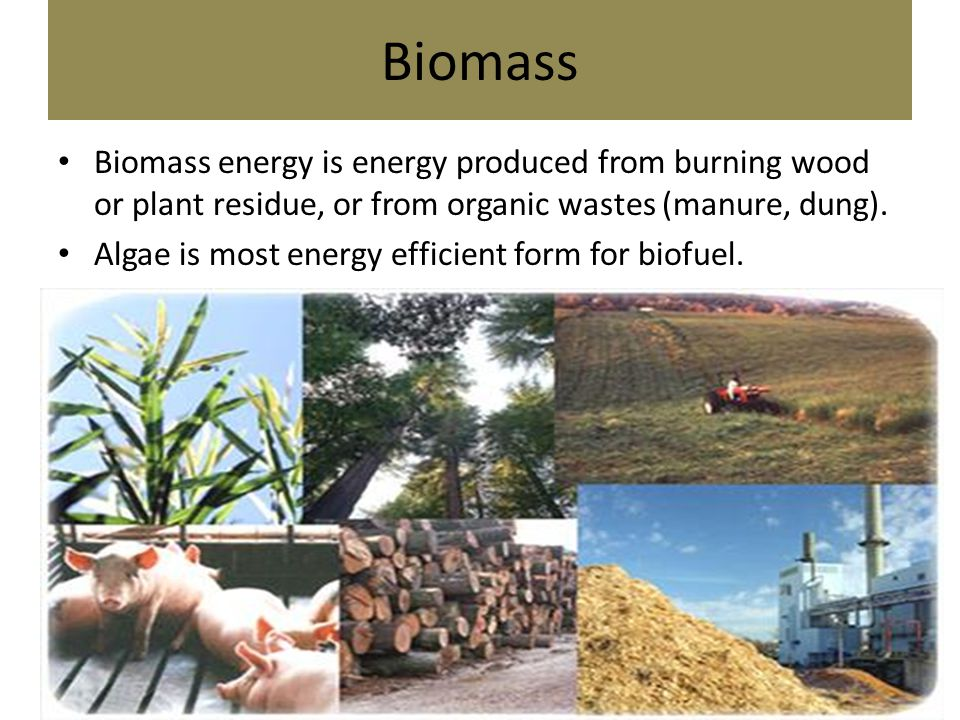 Biomass Biomass energy is energy produced from burning wood or plant residue, or from organic wastes (manure, dung).