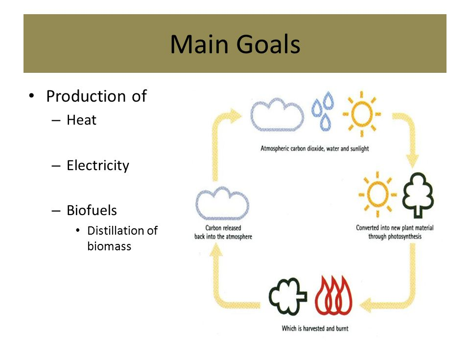 Main Goals Production of – Heat – Electricity – Biofuels Distillation of biomass