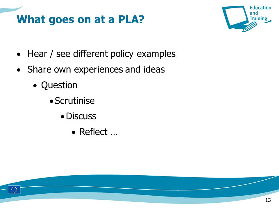 13  Hear / see different policy examples  Share own experiences and ideas  Question  Scrutinise  Discuss  Reflect … What goes on at a PLA