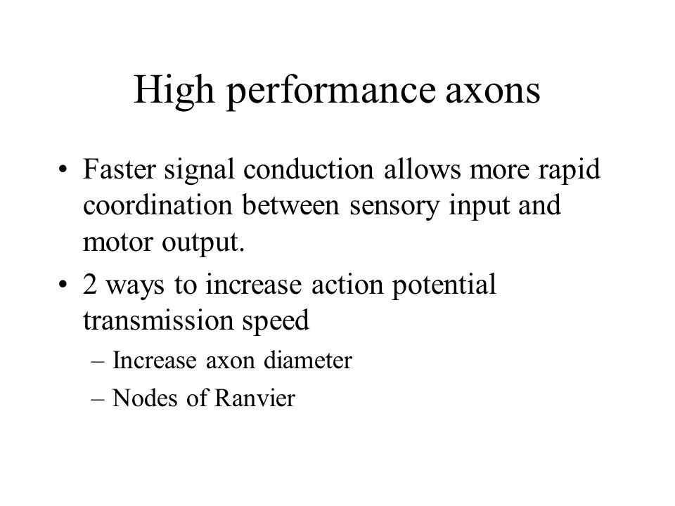 High performance axons Faster signal conduction allows more rapid coordination between sensory input and motor output.