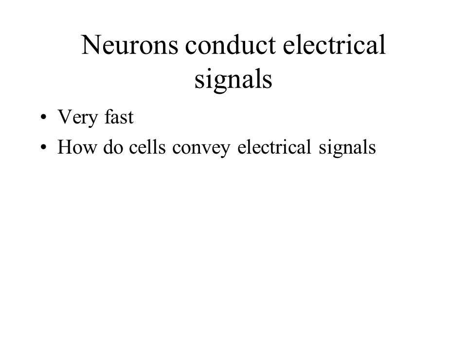 Neurons conduct electrical signals Very fast How do cells convey electrical signals