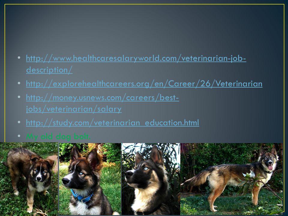 By : Lynnette Gerandy Sanchez  M  Veterinarians provide