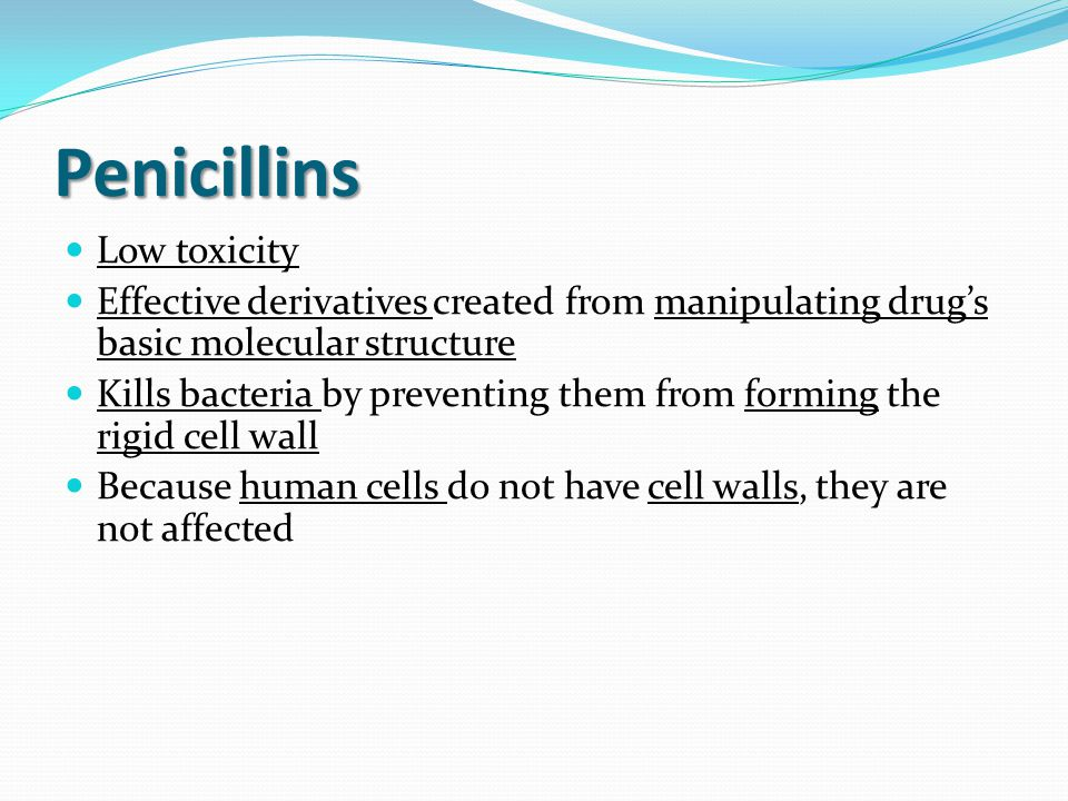 Penicillins Low toxicity Effective derivatives created from manipulating drug's basic molecular structure Kills bacteria by preventing them from forming the rigid cell wall Because human cells do not have cell walls, they are not affected