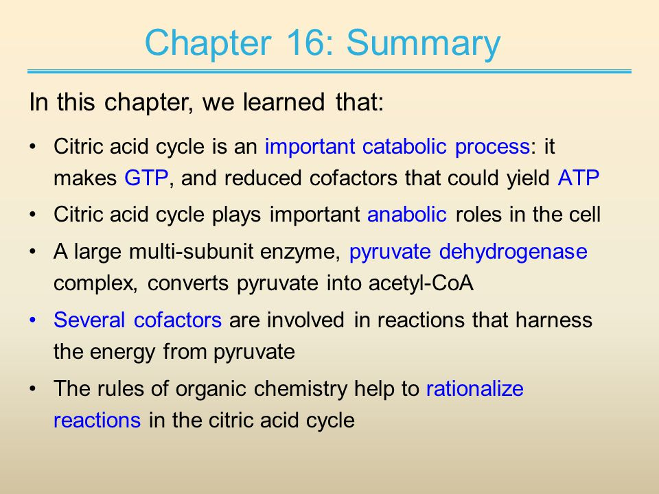 Chapter 16: Summary Citric acid cycle is an important catabolic process: it makes GTP, and reduced cofactors that could yield ATP Citric acid cycle plays important anabolic roles in the cell A large multi-subunit enzyme, pyruvate dehydrogenase complex, converts pyruvate into acetyl-CoA Several cofactors are involved in reactions that harness the energy from pyruvate The rules of organic chemistry help to rationalize reactions in the citric acid cycle In this chapter, we learned that: