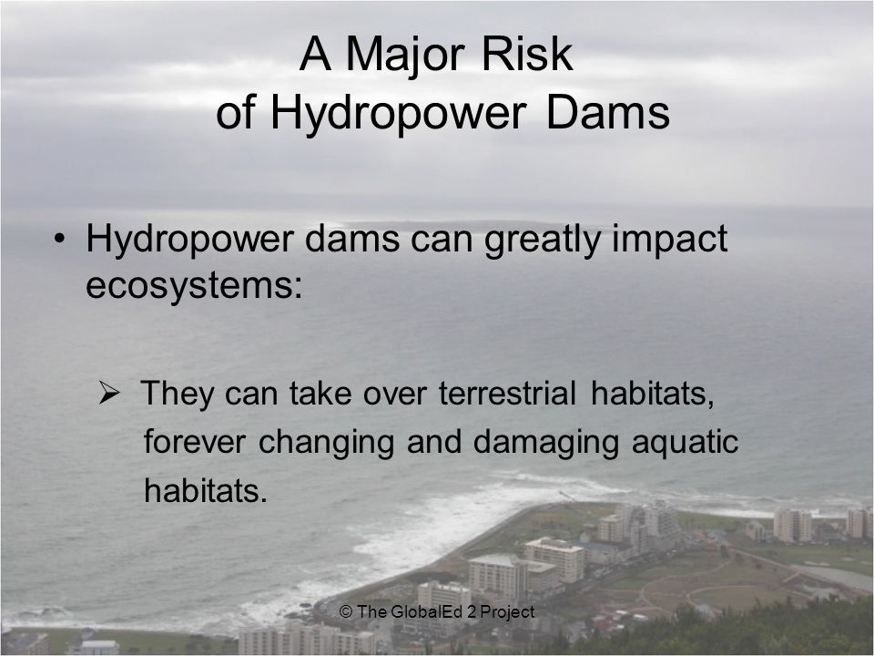 A Major Risk of Hydropower Dams Hydropower dams can greatly impact ecosystems:  They can take over terrestrial habitats, forever changing and damaging aquatic habitats.