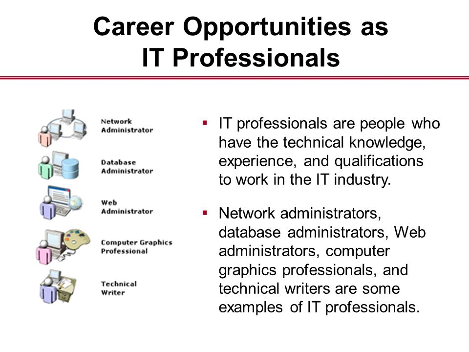 Career Opportunities as IT Professionals  IT professionals are people who have the technical knowledge, experience, and qualifications to work in the IT industry.