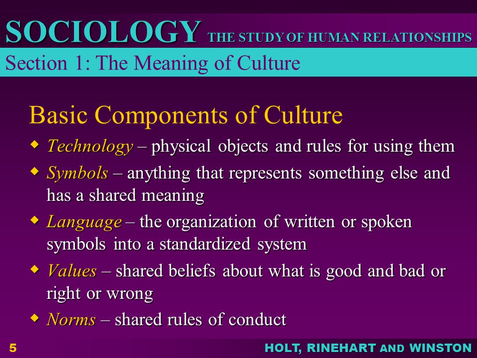 THE STUDY OF HUMAN RELATIONSHIPS SOCIOLOGY HOLT, RINEHART AND WINSTON 5 Basic Components of Culture  Technology – physical objects and rules for using them  Symbols – anything that represents something else and has a shared meaning  Language – the organization of written or spoken symbols into a standardized system  Values – shared beliefs about what is good and bad or right or wrong  Norms – shared rules of conduct Section 1: The Meaning of Culture