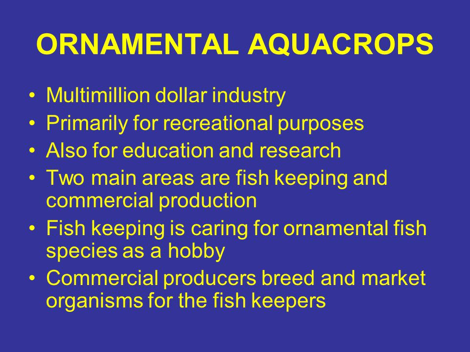 Ornamental Aquaculture Objectives Chapter 15 Meaning And Nature Components Management Selection Factors Production Methods Plant Selection And Culture Ppt Download