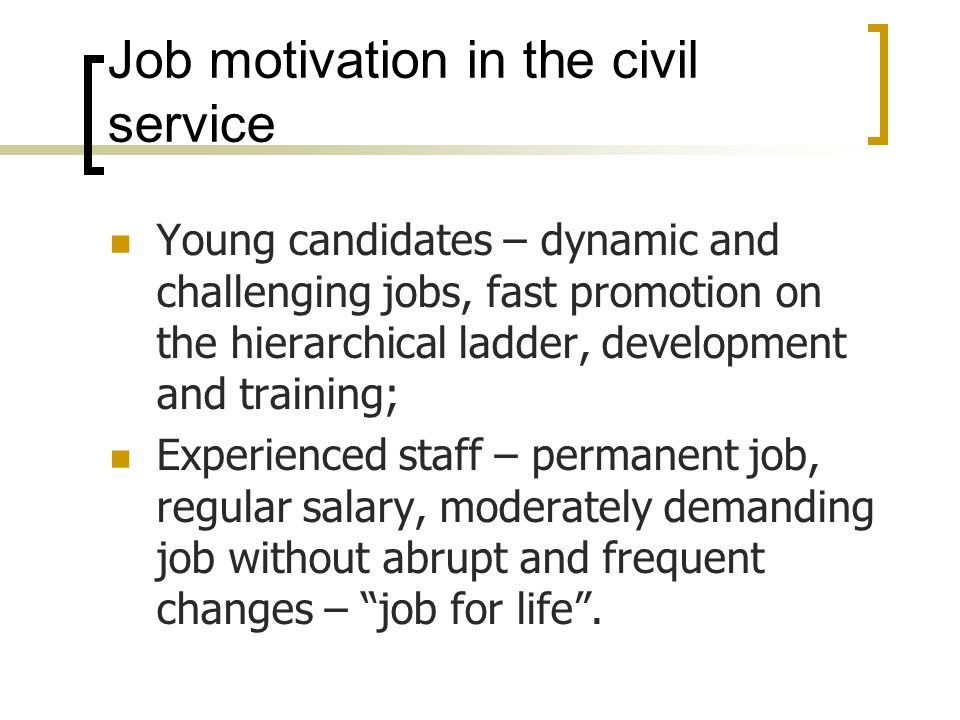 Job motivation in the civil service Young candidates – dynamic and challenging jobs, fast promotion on the hierarchical ladder, development and training; Experienced staff – permanent job, regular salary, moderately demanding job without abrupt and frequent changes – job for life .