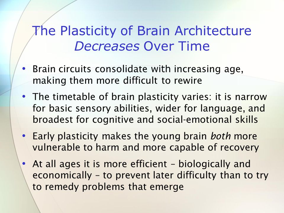 The Plasticity of Brain Architecture Decreases Over Time Brain circuits consolidate with increasing age, making them more difficult to rewire The timetable of brain plasticity varies: it is narrow for basic sensory abilities, wider for language, and broadest for cognitive and social-emotional skills Early plasticity makes the young brain both more vulnerable to harm and more capable of recovery At all ages it is more efficient – biologically and economically – to prevent later difficulty than to try to remedy problems that emerge