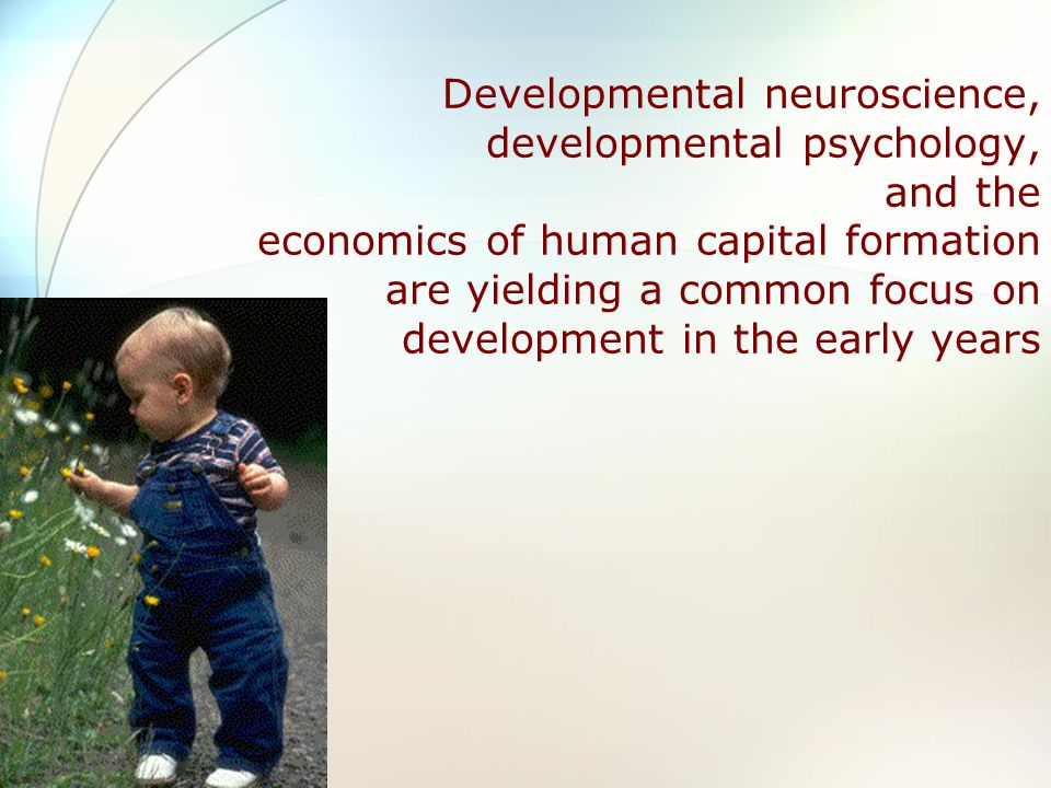 Developmental neuroscience, developmental psychology, and the economics of human capital formation are yielding a common focus on development in the early years