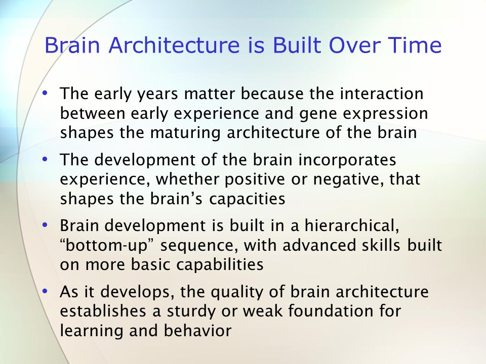 Brain Architecture is Built Over Time The early years matter because the interaction between early experience and gene expression shapes the maturing architecture of the brain The development of the brain incorporates experience, whether positive or negative, that shapes the brain's capacities Brain development is built in a hierarchical, bottom-up sequence, with advanced skills built on more basic capabilities As it develops, the quality of brain architecture establishes a sturdy or weak foundation for learning and behavior