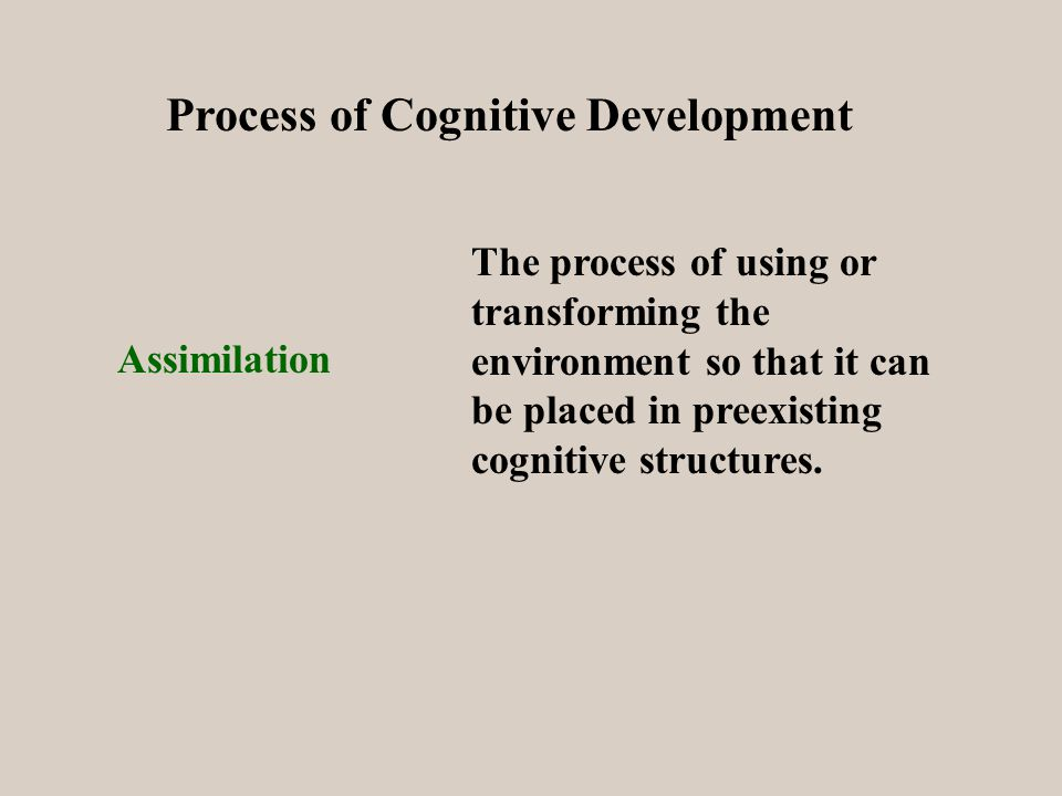 Process of Cognitive Development Assimilation The process of using or transforming the environment so that it can be placed in preexisting cognitive structures.