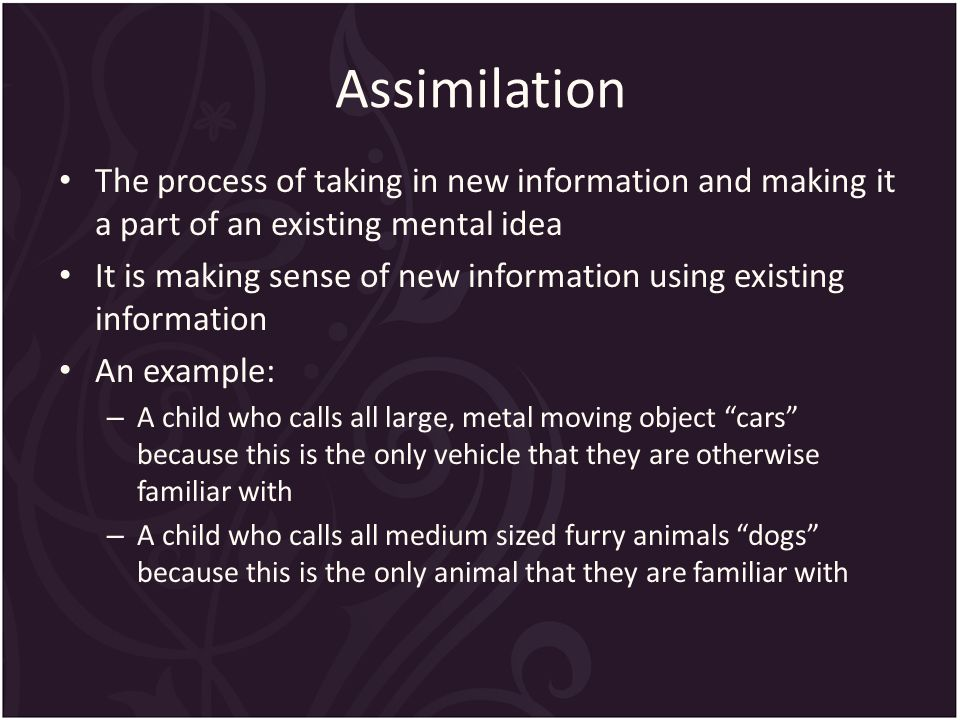 Assimilation The process of taking in new information and making it a part of an existing mental idea It is making sense of new information using existing information An example: – A child who calls all large, metal moving object cars because this is the only vehicle that they are otherwise familiar with – A child who calls all medium sized furry animals dogs because this is the only animal that they are familiar with