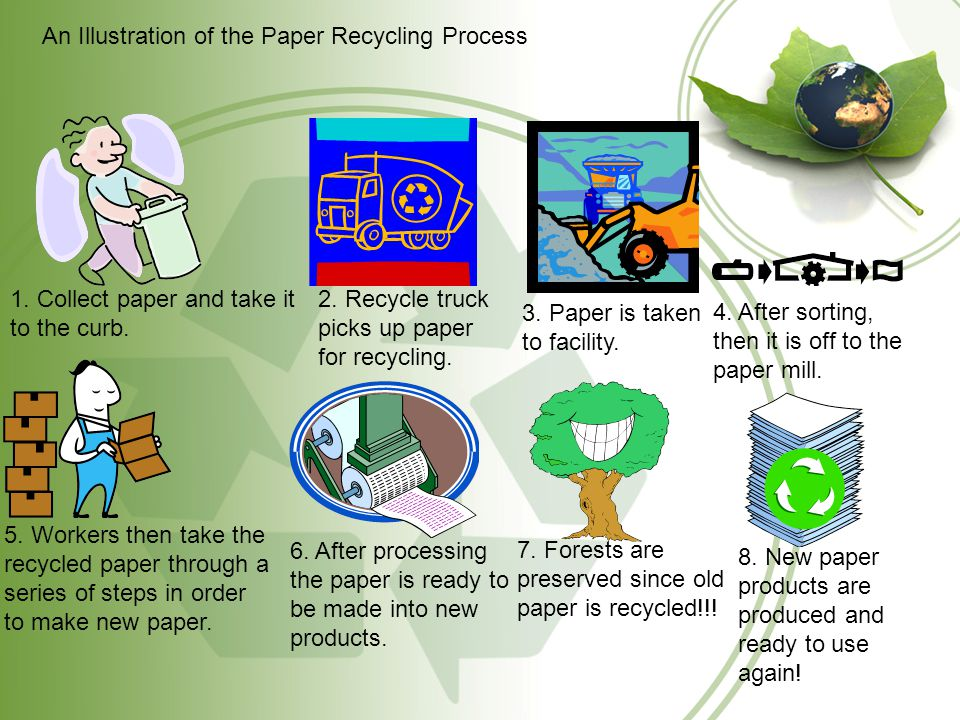 Recycling Paper A Visual Approach  What is Paper? Paper is