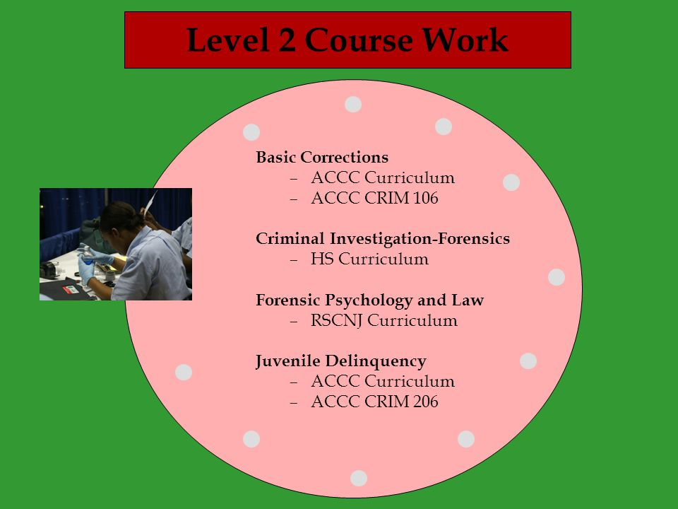 Level 2 Course Work Basic Corrections –ACCC Curriculum –ACCC CRIM 106 Criminal Investigation-Forensics –HS Curriculum Forensic Psychology and Law –RSCNJ Curriculum Juvenile Delinquency –ACCC Curriculum –ACCC CRIM 206