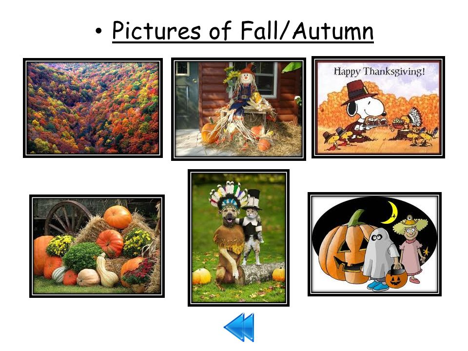 Pictures of Fall/Autumn