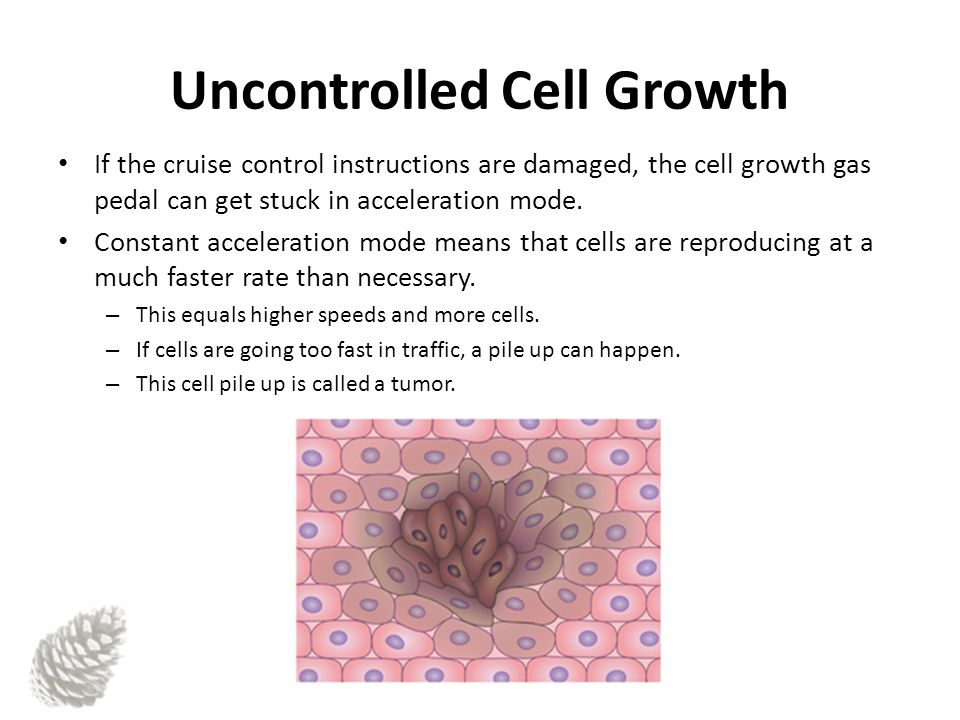 Uncontrolled Cell Growth If the cruise control instructions are damaged, the cell growth gas pedal can get stuck in acceleration mode.