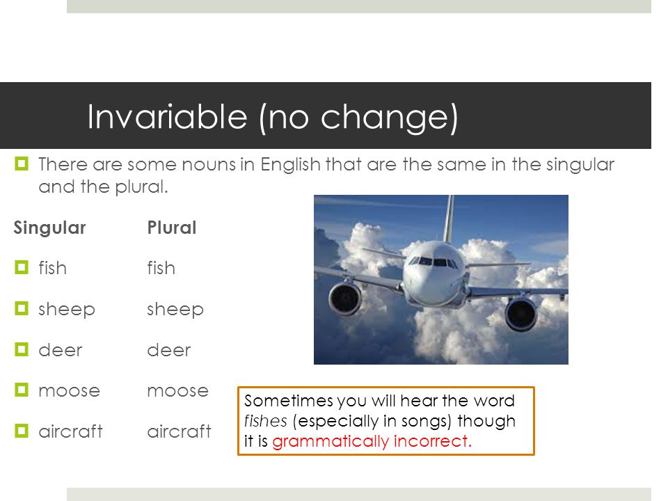 Invariable (no change)  There are some nouns in English that are the same in the singular and the plural.