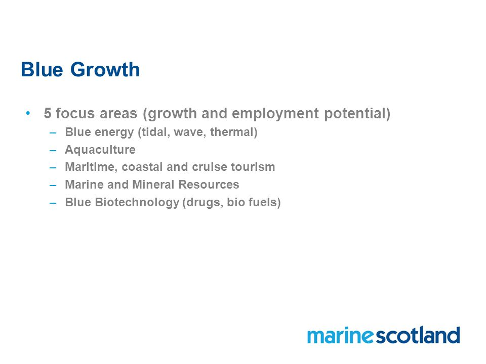 Blue Growth 5 focus areas (growth and employment potential) –Blue energy (tidal, wave, thermal) –Aquaculture –Maritime, coastal and cruise tourism –Marine and Mineral Resources –Blue Biotechnology (drugs, bio fuels)