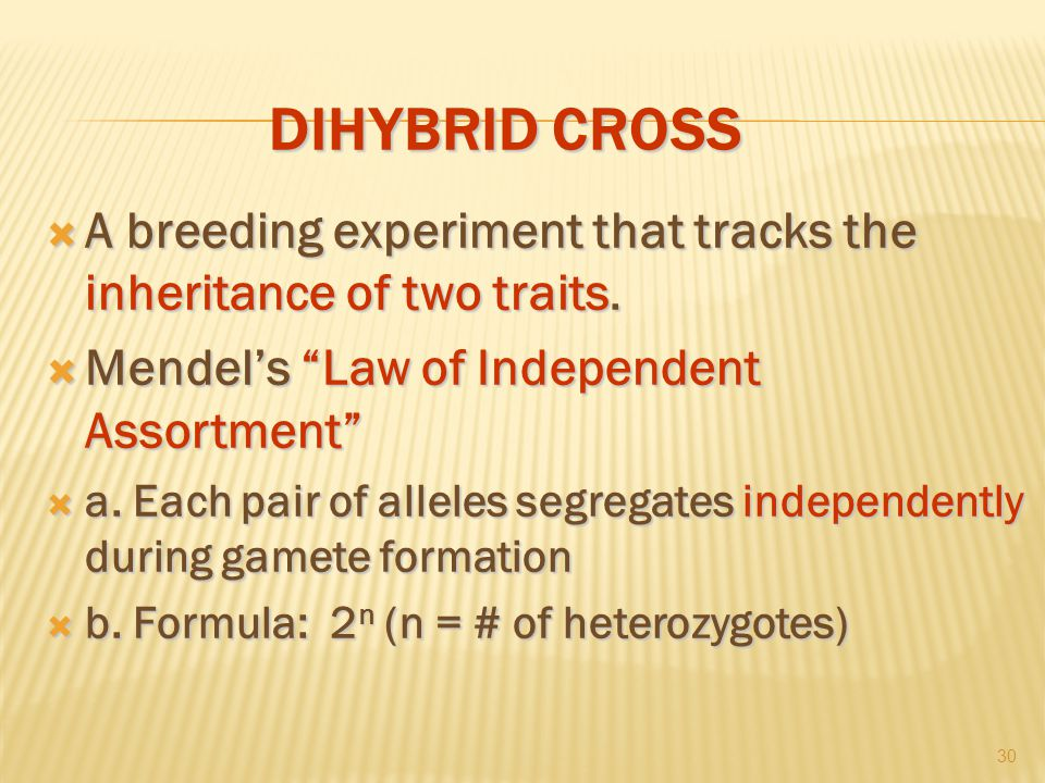 DIHYBRID CROSS  A breeding experiment that tracks the inheritance of two traits.