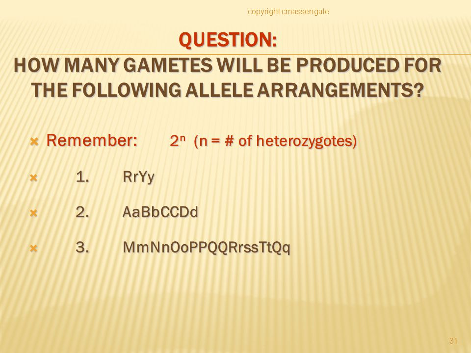 QUESTION: HOW MANY GAMETES WILL BE PRODUCED FOR THE FOLLOWING ALLELE ARRANGEMENTS.