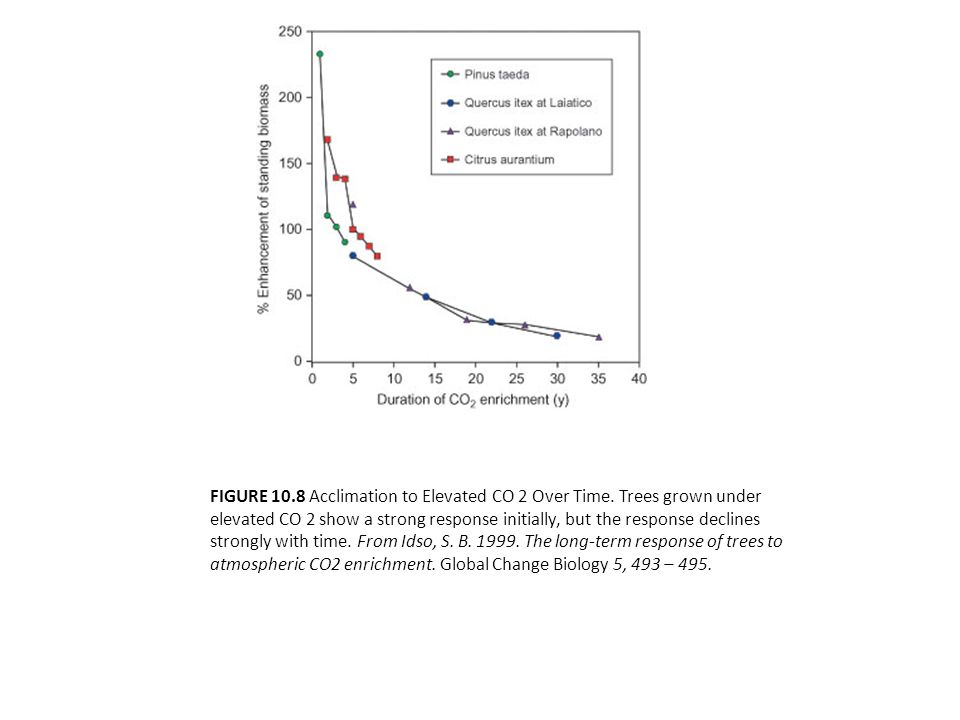 FIGURE 10.8 Acclimation to Elevated CO 2 Over Time.