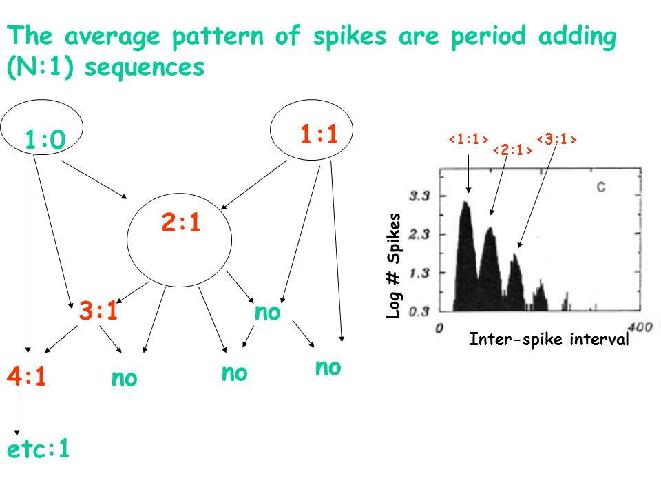 1:1 1:0 2:1 no3:1 no 4:1 The average pattern of spikes are period adding (N:1) sequences etc:1 Inter-spike interval Log # Spikes