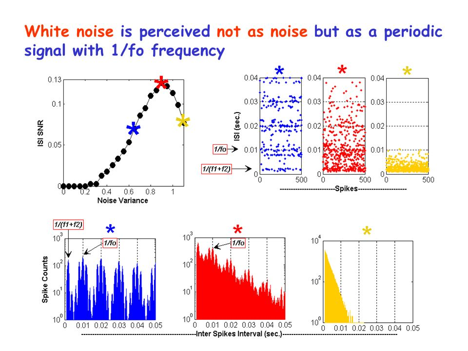 White noise is perceived not as noise but as a periodic signal with 1/fo frequency