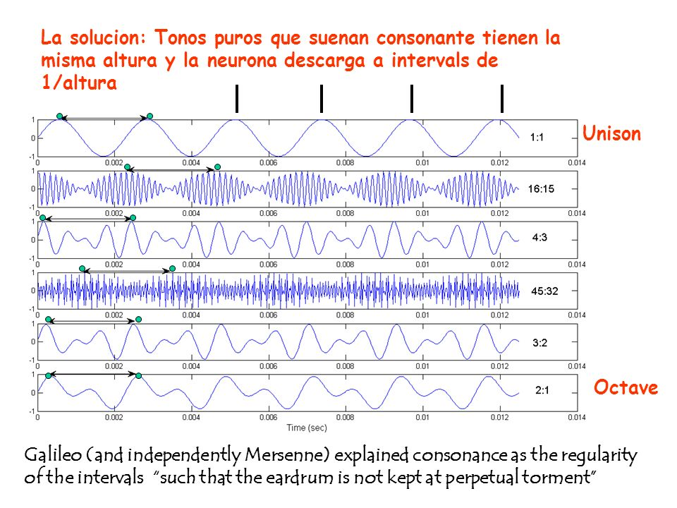 Unison Octave Galileo (and independently Mersenne) explained consonance as the regularity of the intervals such that the eardrum is not kept at perpetual torment La solucion: Tonos puros que suenan consonante tienen la misma altura y la neurona descarga a intervals de 1/altura