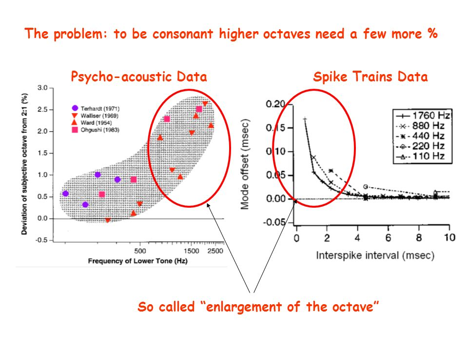 The problem: to be consonant higher octaves need a few more % Psycho-acoustic DataSpike Trains Data So called enlargement of the octave
